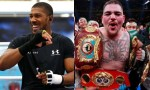 Anthony Joshua Gets Re-match With Andy Ruiz In November