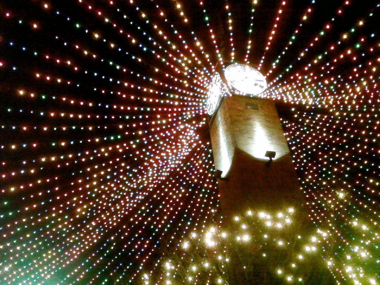 stringed lights