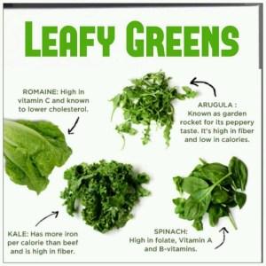 dark-leafy-greens