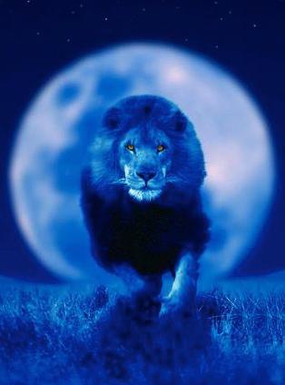 full-moon-leo