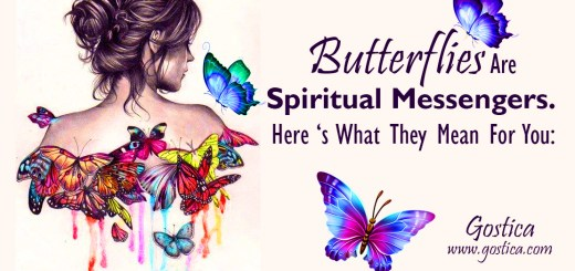 Butterflies-Are-Spiritual-Messengers.-Here-'s-What-They-Mean-For-You.jpg