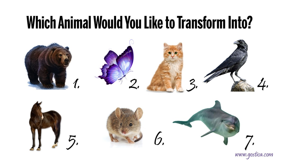 Shapeshift Quiz: Wich Animal Would You Like  to Transform Into?