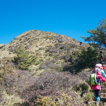 便宜有好貨,登山新手的第一支登山杖Quechua Forclaz 500開箱心得