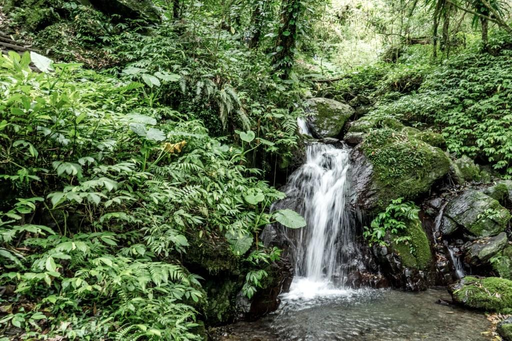 聖母山莊步道旁的小溪