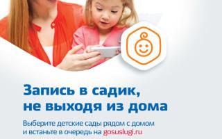 Составляющие портала госуслуг — Госуслуги 35 ру личный ...