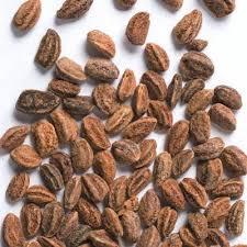 насіння мушмули