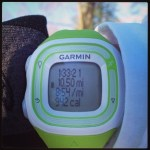 Training Log: Cherry Blossom 10 Miler (Week 2)