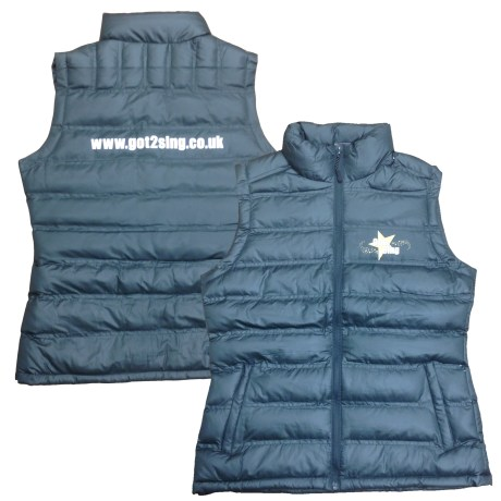 got_2_sing_unisex_grey_ice_bird_padded_gilet