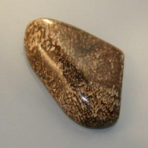 Dinosaur bone cabochon
