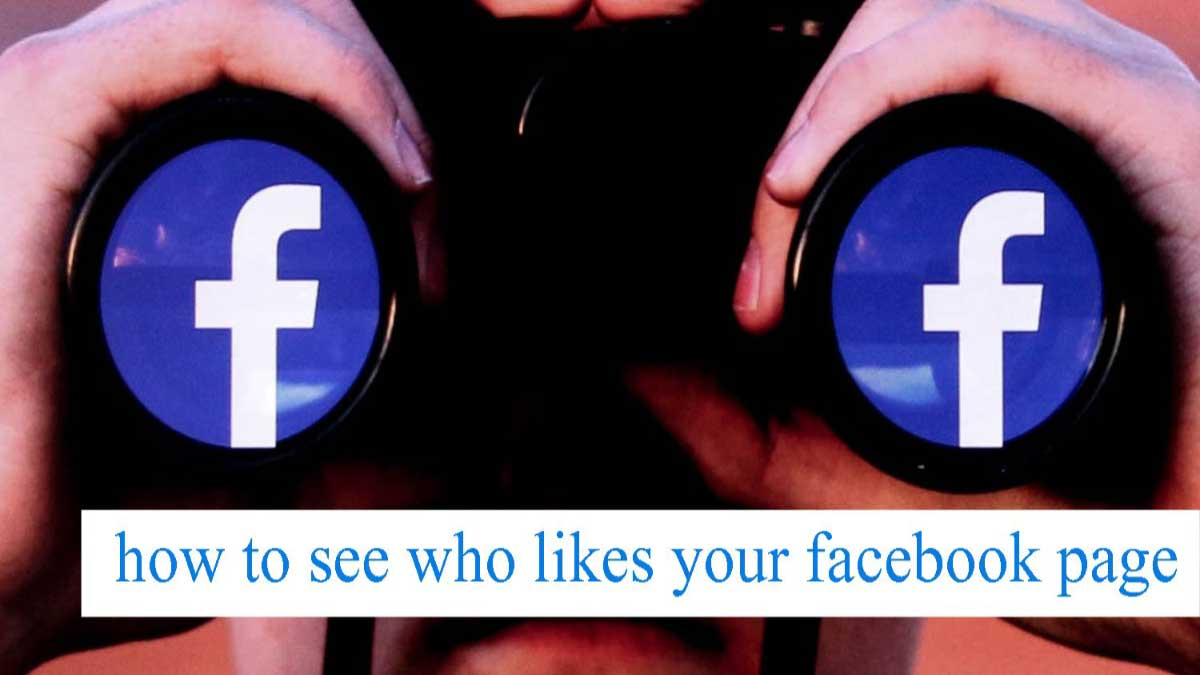How To See Who Likes Your Facebook Page [The Complete Guide]
