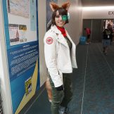 Fox McCloud from the Starfox series.