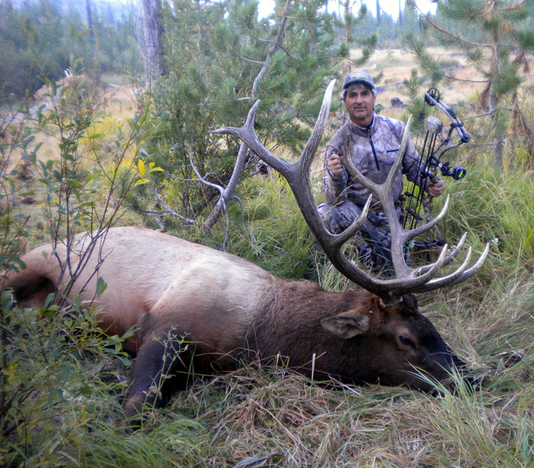 Four Tips for New Archery Elk Hunters