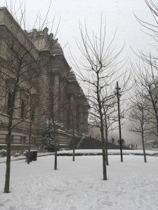 The Metropolitan Museum of Art, With Snow