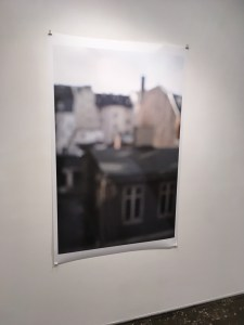 Maxine Henryson photo at A.I.R. Gallery