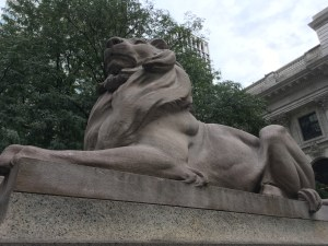 Patience, Lion, New York Public Library