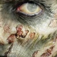 Zombie Cheekbones