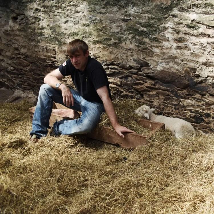 Sleeping lamb with farmer.