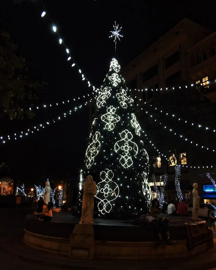 A Christmas Tree in Puerto Rico