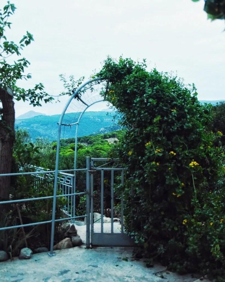 The island of Aegina