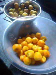 apricots for stewing