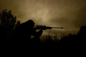 sniper-at-work-1431849-1279x852