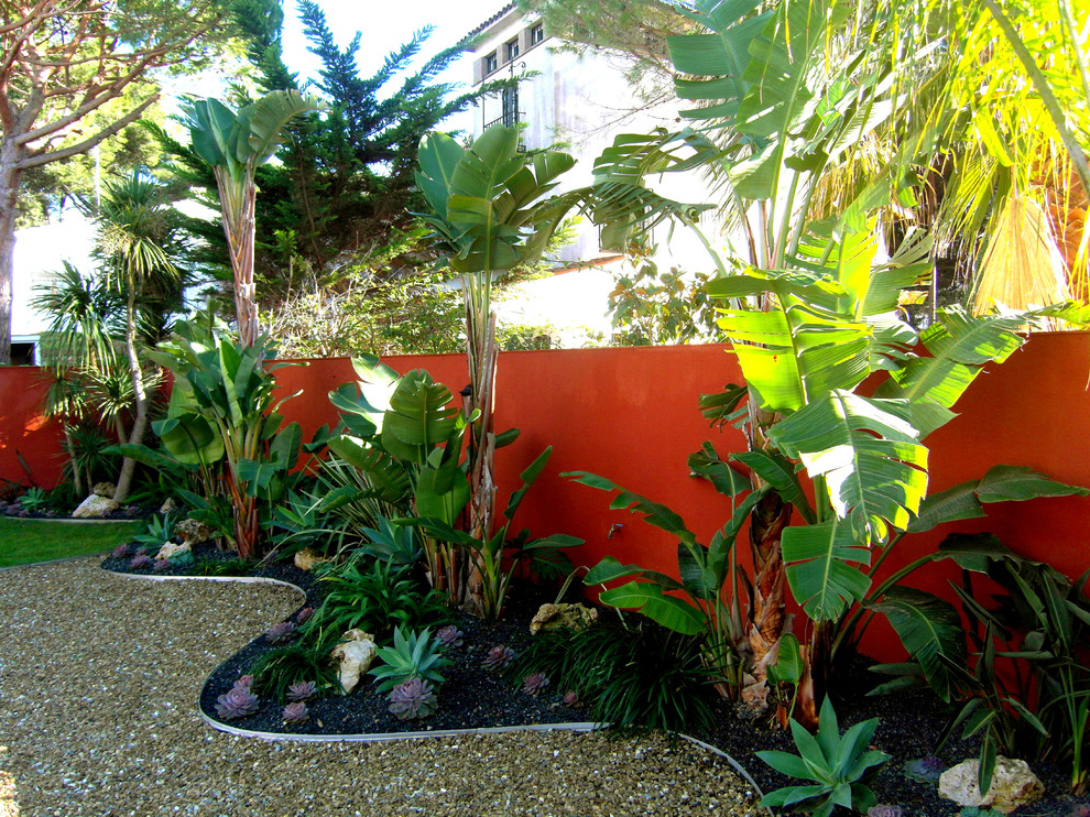 Tropical Backyard Ideas For Beautiful View #507 | Garden Ideas on Tropical Small Backyard Ideas id=92859