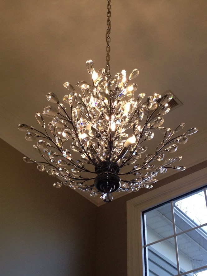 Foyer Chandelier Branch Of Light Design Joshua Marshall Home With Regard To Crystal
