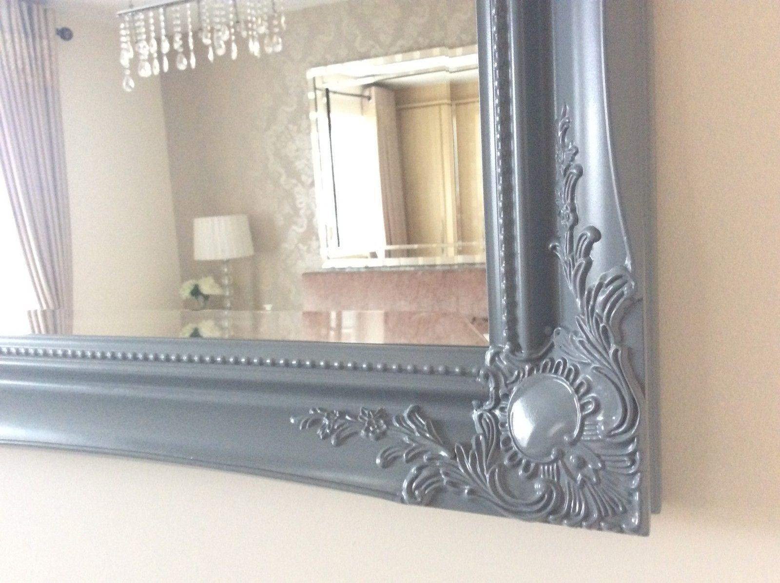 20 Ideas Of Silver Ornate Mirrors