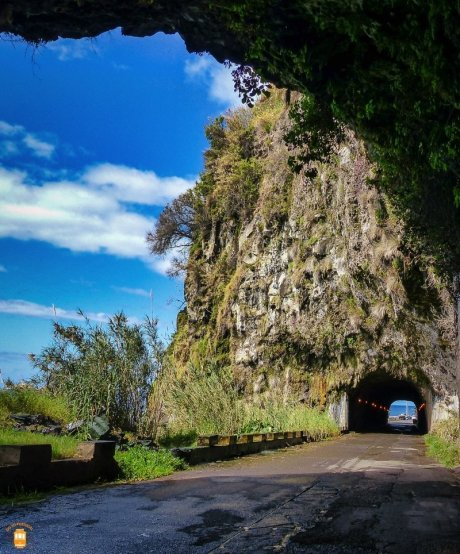 Cascata dos Anjos - Madeira 1