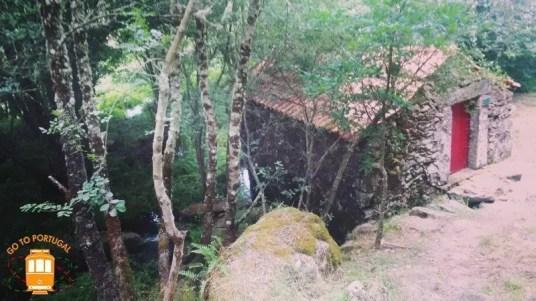 Boticas Parque - NB 4