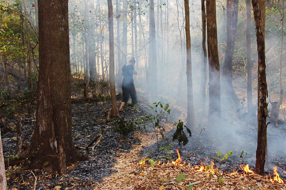 Burning the forest at Mae Yen Waterfall in Pai