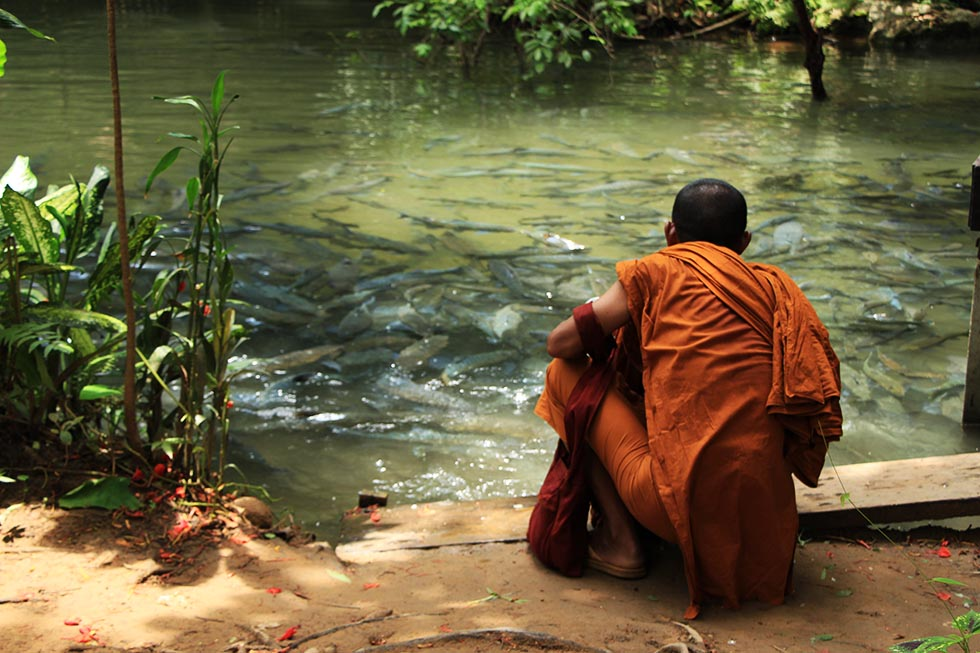 A monk feeding the catfish at the Fish Cave