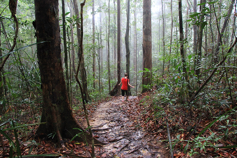 Rain is falling down -Khao Ngon Nak Trail in Krabi