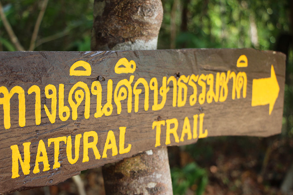 Natual Trail on Koh Surin