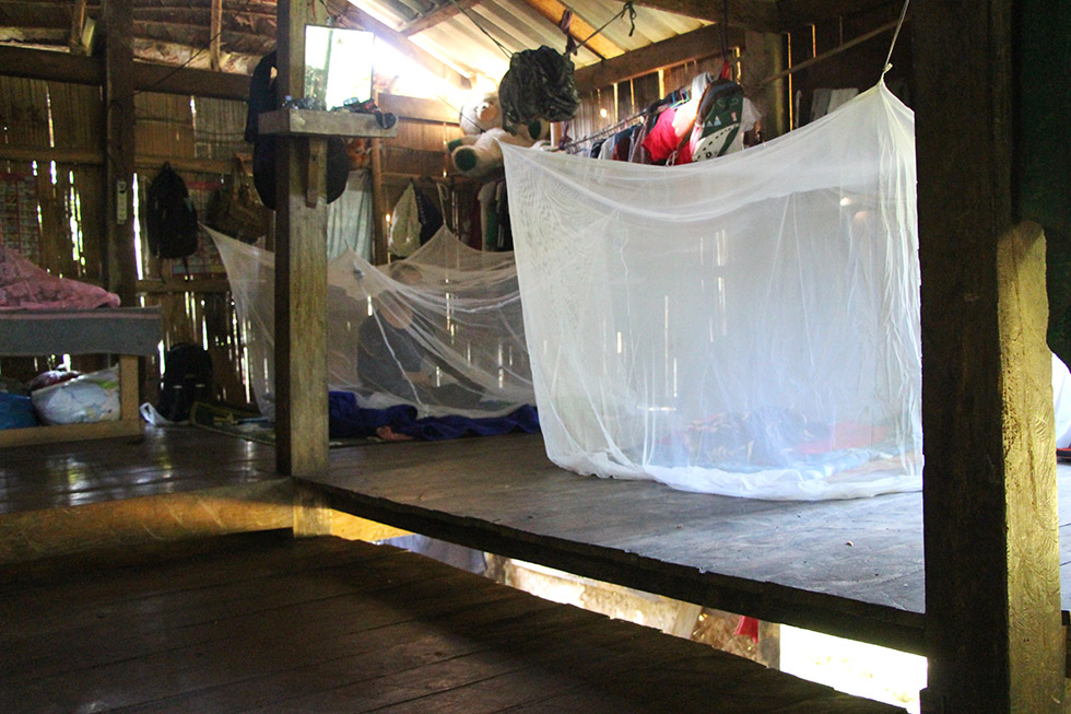 Even in the jungle of Thung Yai there are mosquito nets