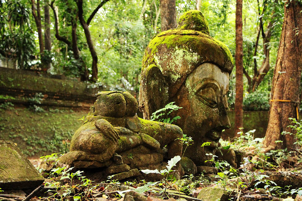 Buddha Statues covered in moss - Wat Umong in Chiang Mai