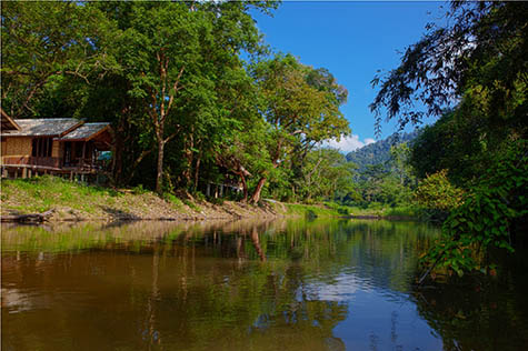 Riverside Cottages, Khao Sok National Park