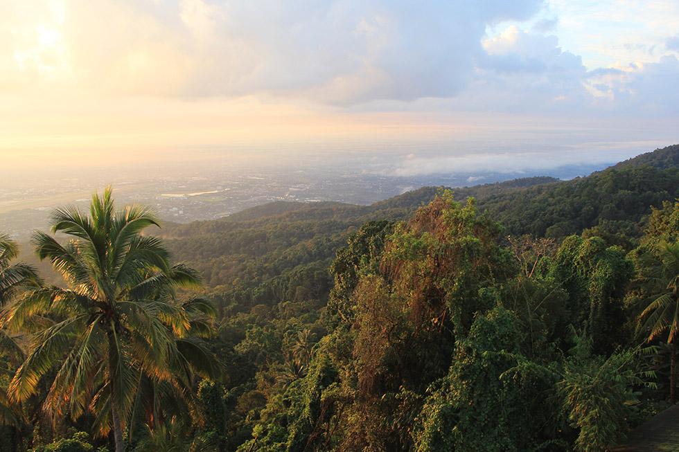 View over Doi Suthep's lush, green jungle