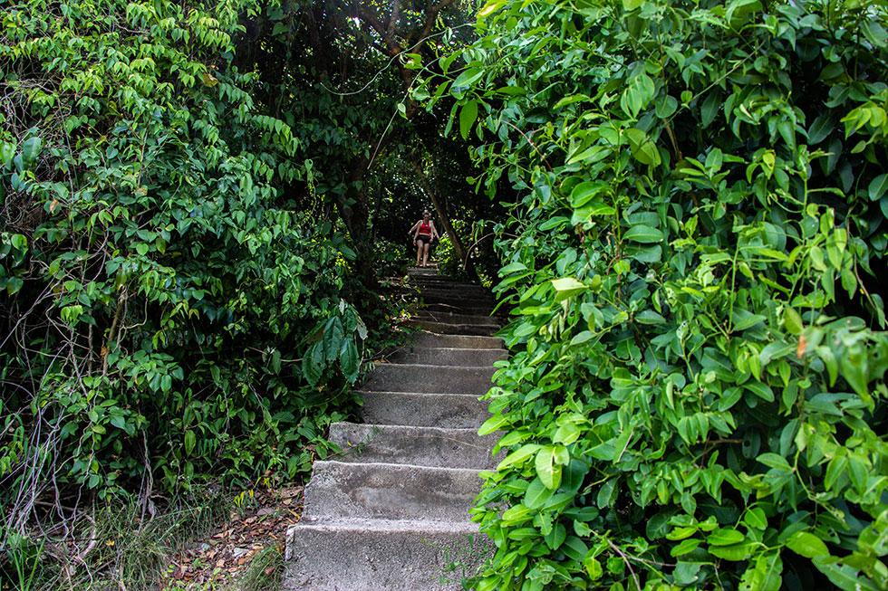 Steps to Koh Nang Yuan Viewpoint