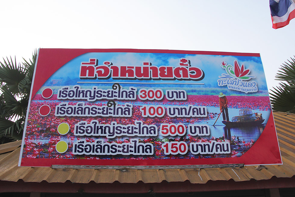 Red Lotus Sea in Udon Thani