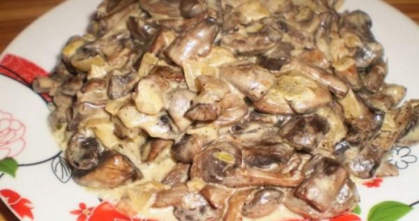 Опята жареные с картошкой: рецепты приготовления с фото