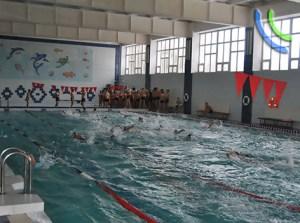 гто плавание