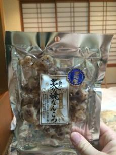 Hiking Snacks - Dried Octopus