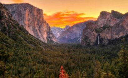 7-Day Yosemite National Park, Las Vegas, San Francisco Bus Tour