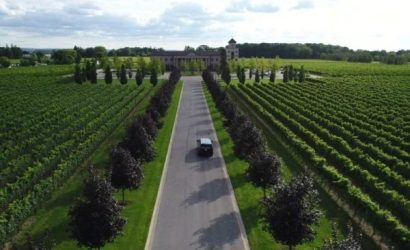 Private Niagara Wine Tour From Toronto