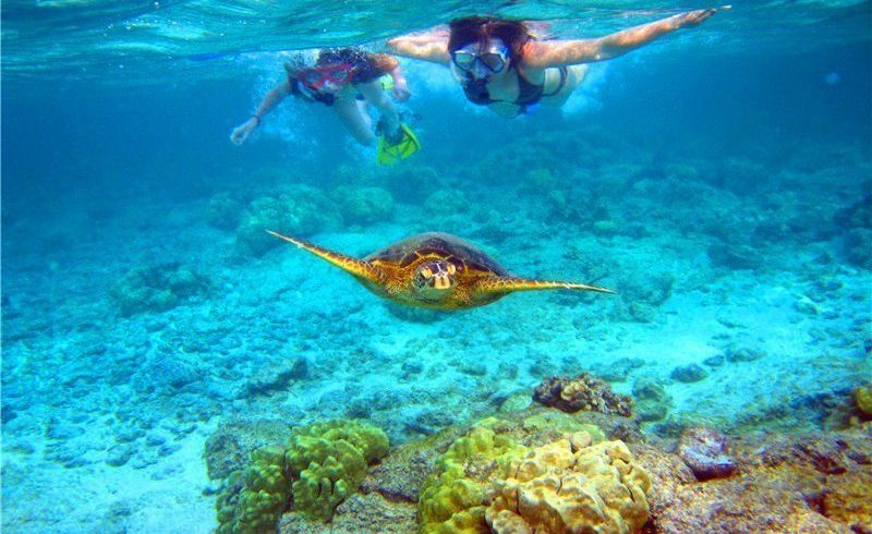 Oahu Adventure Tour to Kaneohe Bay
