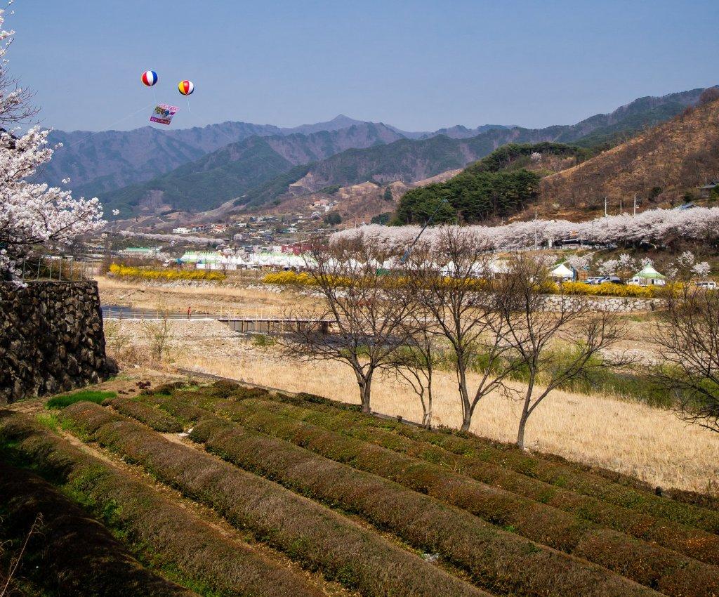 Beautiful Countryside in Hadong, South Korea