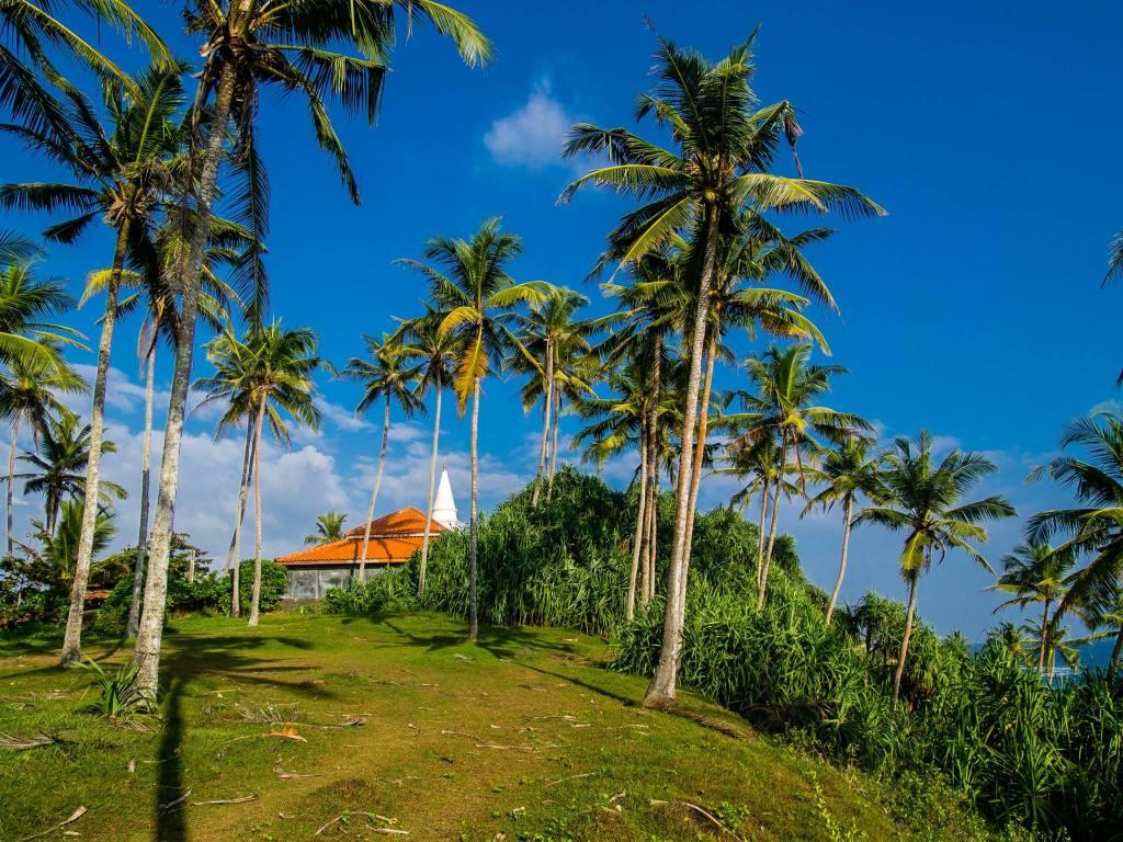 Temple at Coconut Tree Hill, Mirissa