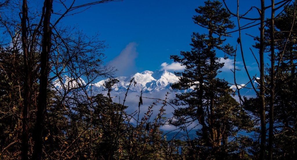 Last views of Kanchenjunga on the Sandakphu Trek