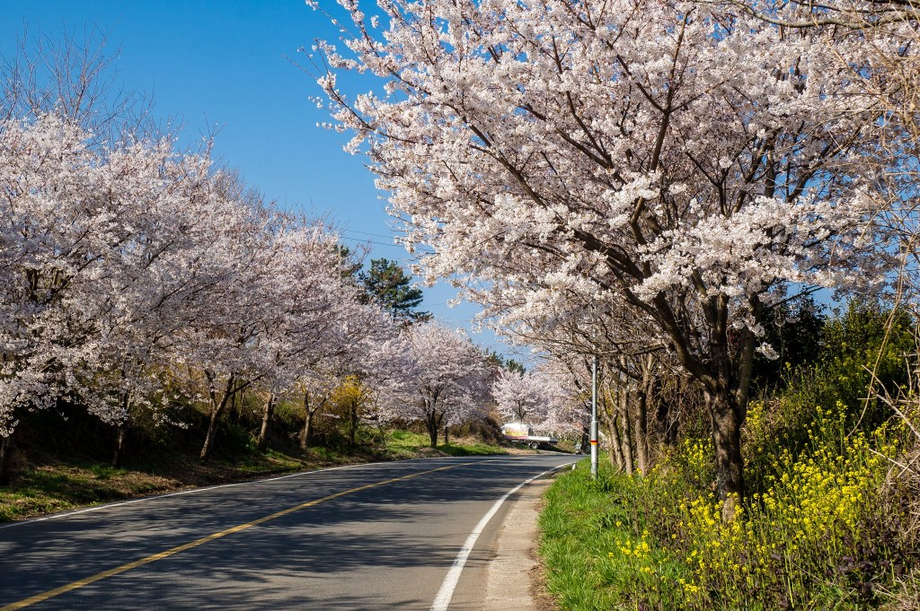 Road near Mochung Park, Sacheon